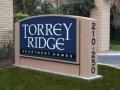 Torrey Ridge.jpg